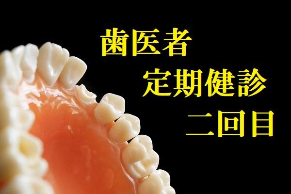 歯医者定期健診二回目
