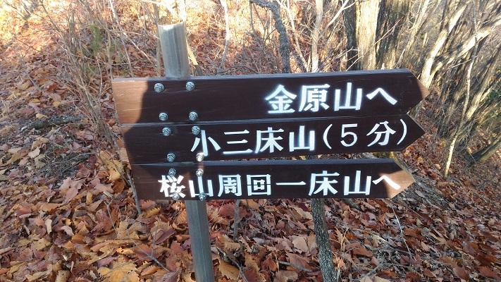 三床山登山_桜山への看板