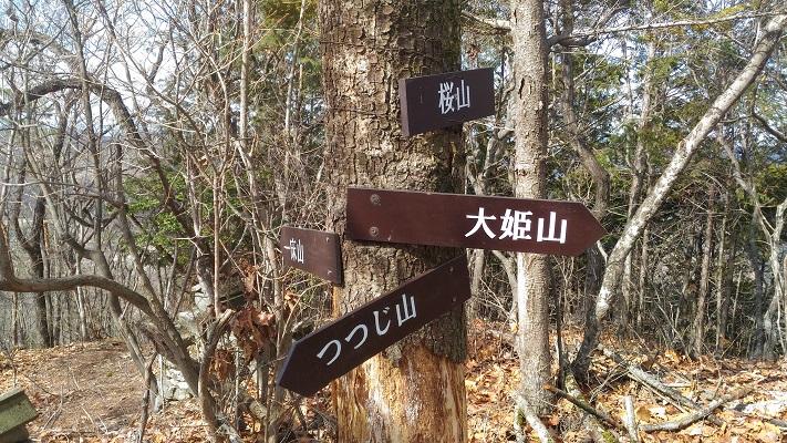 三床山登山_桜山山頂