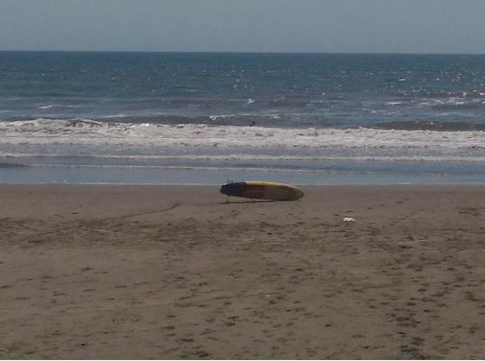 九十九里浜サーフィン
