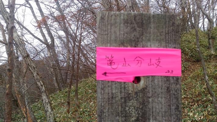 登山口→駒ヶ岳その6