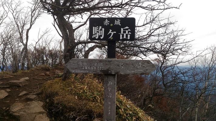 登山口→駒ヶ岳その9