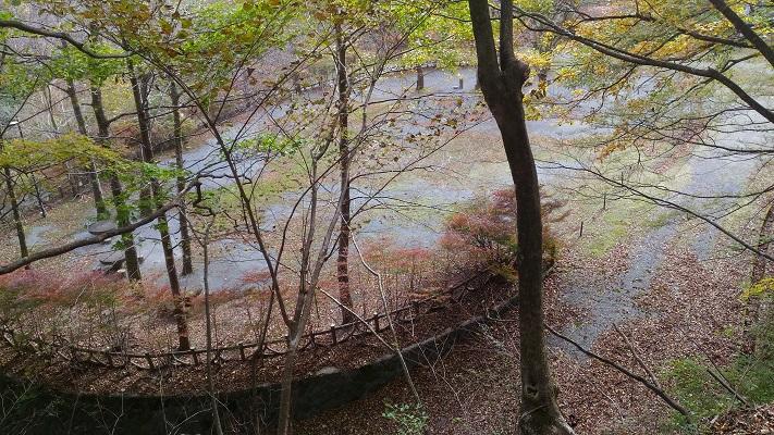 御神水→利平茶屋森林公園その4