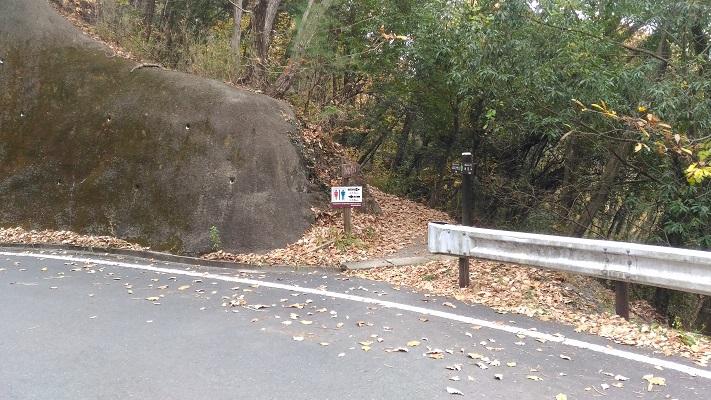 舗装路に降りてすぐ山道