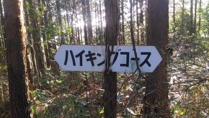 これがハイキングコース!?