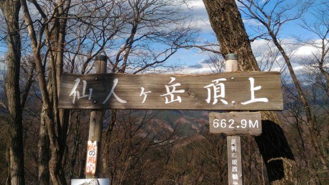 仙人ヶ岳山頂!