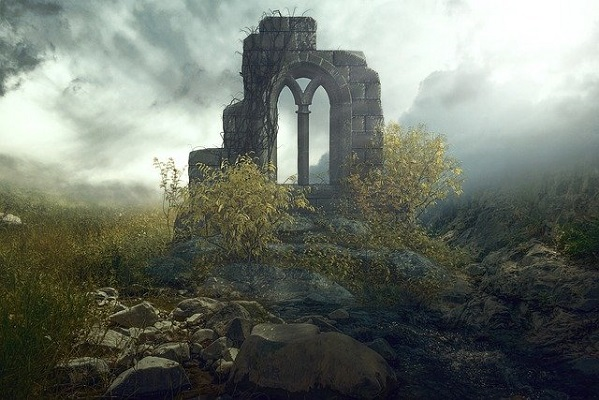 廃墟に自然