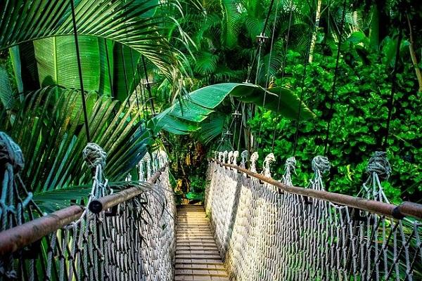 密林amazon