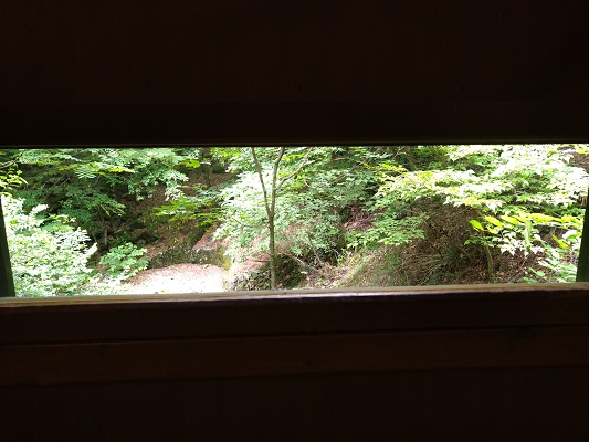 小窓から野鳥を観察する