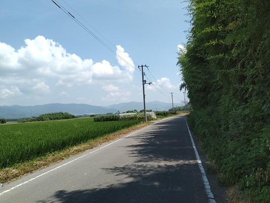 入善寺島を行く