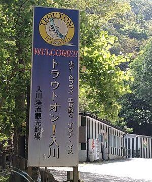 トラウトオン入川